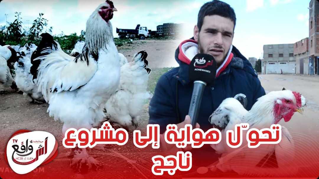 آسفي.. شاب تحدى البطالة وأنشأ مشروعاً لتربية سلالة نادرة من الدجاج و بطريقة جد مثيرة ولا تصدق