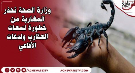 وزارة الصحة تحذر المغاربة من خطورة لسعات العقارب ولدغات الأفاعي
