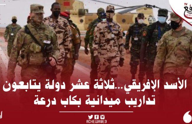""""""" الأسد الإفريقي 2021 """" ملاحظون عسكريون من حوالي 13 دولة يتابعون تداريب ميدانية بكاب درعة"""